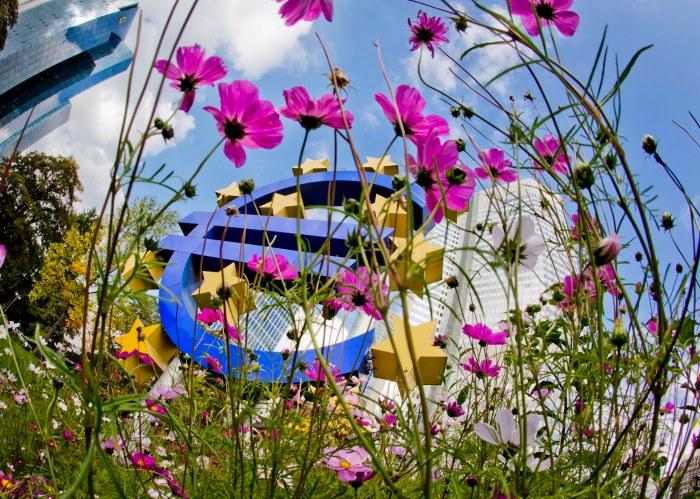 Euro Flowers
