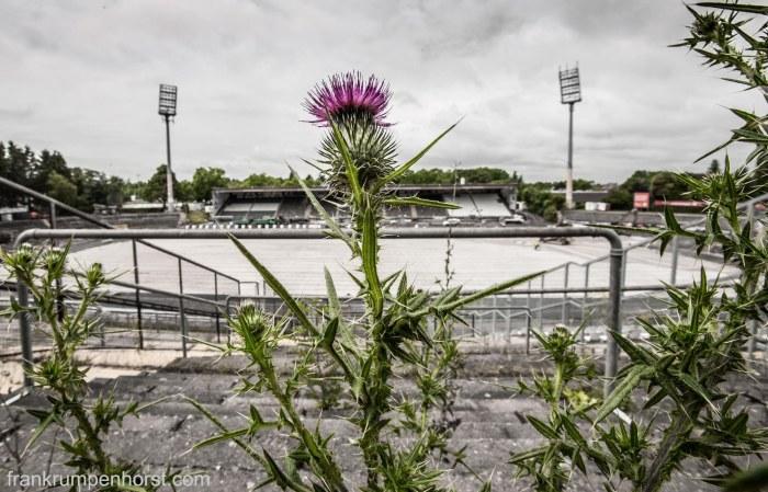 Thistle Stadium