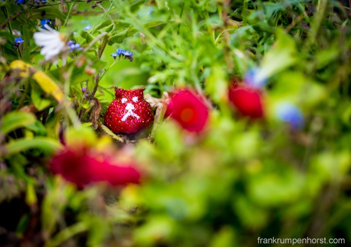 strawbear1